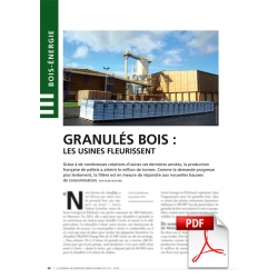 Granulés bois : les usines fleurissent (Article PDF)