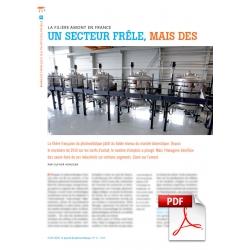 Article PDF - Filière PV amont (Mai 2015)