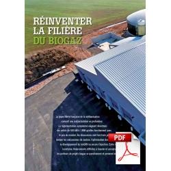 Article PDF - Dossier biogaz : réinventer la filière (Mai/Juin 2015)